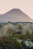 Tongariro National Park Stock Photos