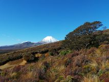 Tongariro National Park, New Zealand Royalty Free Stock Images