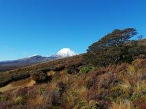 Tongariro Nationalpark lizenzfreie stockbilder