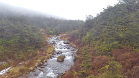 Tongariro nationalpark Royaltyfri Foto