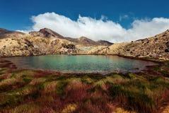 Tongariro Nova Zelândia de cruzamento alpina Fotografia de Stock