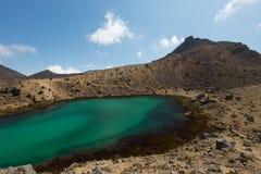 Tongariro Nova Zelândia de cruzamento alpina Imagem de Stock