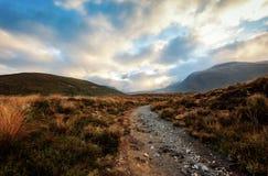 Tongariro Nova Zelândia de cruzamento alpina Imagem de Stock Royalty Free