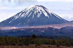 Tongariro park narodowy - góra Ngauruhoe Fotografia Stock