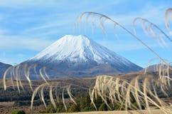 Tongariro parka narodowego góra Ruapehu Obrazy Royalty Free