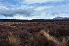 Tongariro parka narodowego krajobraz Obrazy Royalty Free