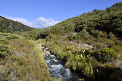 Tongariro trek landscape, NZ Stock Photos