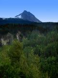 tongass de national de forêt Photographie stock libre de droits