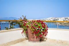 Tongefäß mit blühenden Blumen der Pelargonie auf einer Terrasse mit Seeansicht Lizenzfreie Stockbilder