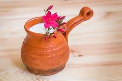 Tongefäß mit Milch und Blume Stockfotos