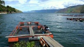 TONGGING, INDONESIË - 20 JUNI 2016: De lokale vissen van vissersvangsten stock footage