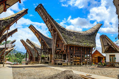 Tongkonan traditional houses Royalty Free Stock Photography