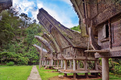 Tongkonan traditional rice barns Royalty Free Stock Photography