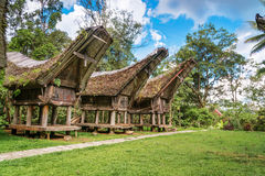 Tongkonan traditional rice barns Royalty Free Stock Photos