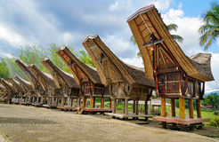 Tongkonan traditional rice barns Royalty Free Stock Images