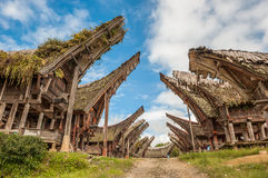 Tongkonanhuizen, Tana Toraja, Sulawesi Stock Foto's