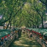 tongli της Κίνας Στοκ φωτογραφία με δικαίωμα ελεύθερης χρήσης