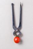 Tongs and cherry tomato Stock Photo