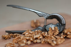 Tongs for chopping walnuts and shelled walnut Stock Images