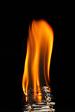 Tongue of flame Stock Images