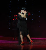 Tongue kiss-The cowboy dance-adagio-the Austria's world Dance Stock Photography