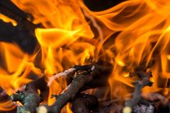 Fire in the fireplace burning wooden sticks royalty free stock photos