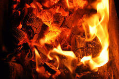 Tongues of flame on the burning coals. Stock Photos
