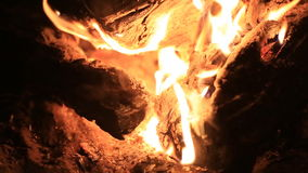 Tongues of flame fire close-up stock video footage