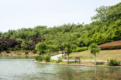 Tongxin lake scenery Royalty Free Stock Images