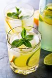 Tonic with lemon, lime and peppermint in a transparent glass with a bottle. Close-up stock image