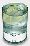 Tonico del gin su bianco Immagine Stock