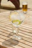 Tonico fresco del gin alla spiaggia immagine stock libera da diritti