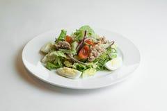 Tonijn en plantaardige salade Stock Foto's