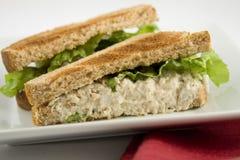 Tonijn-vissen sandwich Stock Afbeeldingen