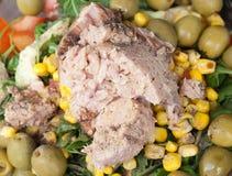 Tonijnsalade met graan, wilde raket, tomaten, komkommers en groen Stock Afbeelding