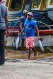 Tonijnvissen die van boten in Mirissa-Haven, Sri Lanka brengen te landen Stock Fotografie