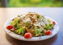 Tonijnvissen met groene salade en tomaten Royalty-vrije Stock Afbeelding