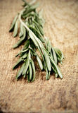 Toning effect sprigs of rosemary on a wooden board closeup verti Stock Photos