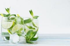 Tonique froid frais tropical de genièvre de cocktail avec la menthe, la chaux, la glace, la paille sur le conseil en bois minable images libres de droits