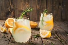 Tonisch water met citroen en rozemarijn stock afbeelding
