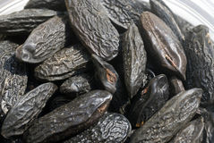 Tonka beans Stock Photo