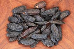 Tonka beans Stock Photos