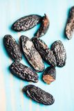 Tonka beans on blue background Royalty Free Stock Photos