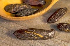 Tonka beans Royalty Free Stock Photo
