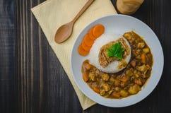 Tonkatsu, японский рис карри с глубок-зажаренной котлетой свинины дальше сватает Стоковое Изображение