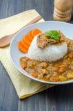 Tonkatsu, японский рис карри с глубок-зажаренной котлетой свинины дальше сватает Стоковая Фотография RF