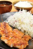 Tonkatsu Royalty Free Stock Photo