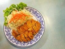 Tonkatsu. Deep Fried tonkatsu stock photo