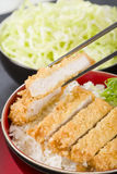 Tonkatsu Royalty Free Stock Photos