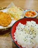Tonkatsu japanese food. Tonkatsu japanese style food with japanese rice Royalty Free Stock Image